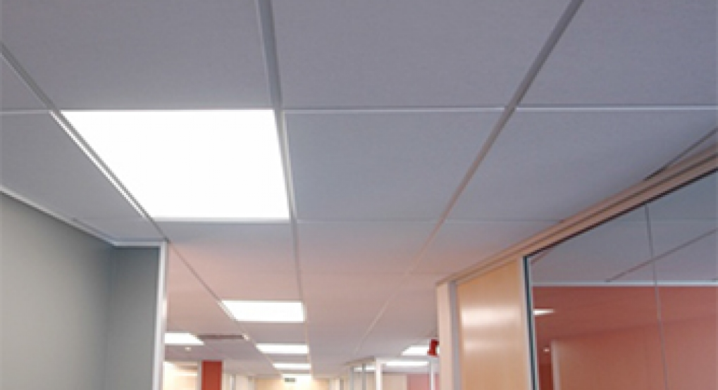 BASI Ceiling Light Panels