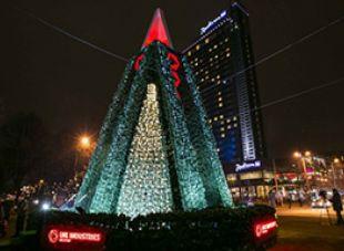 Путь рождественских елок 2014